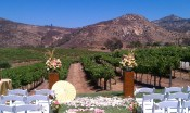 Wedding Ceremony at Orfila Winery